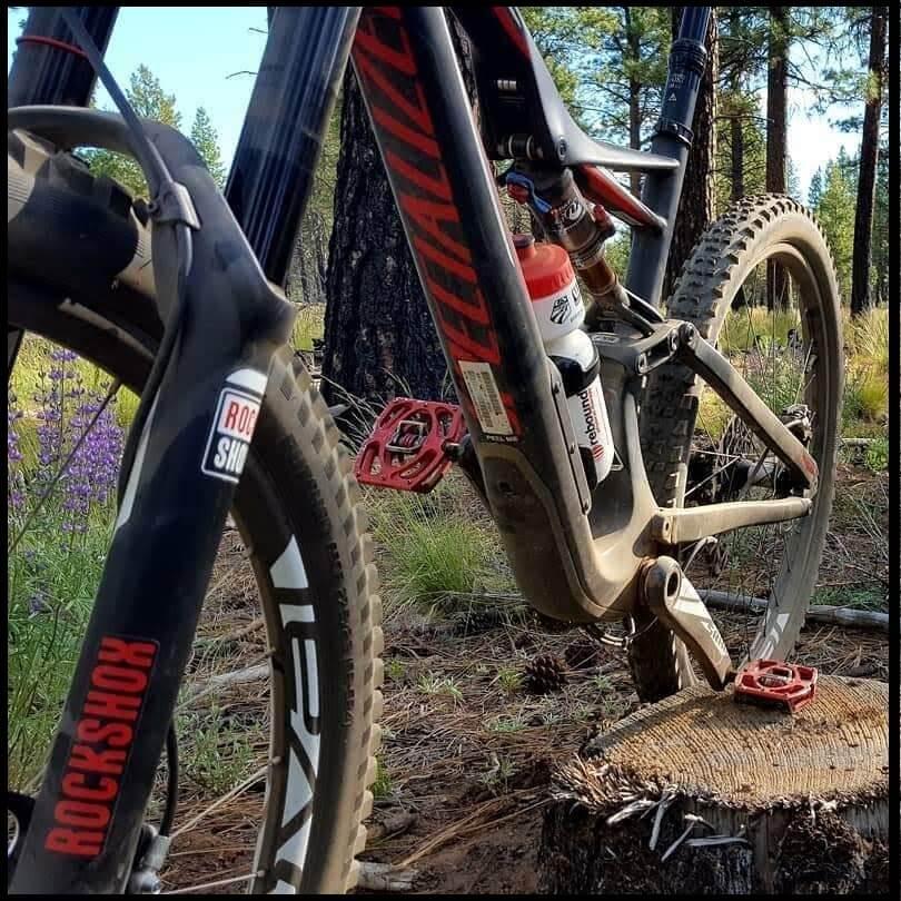Mountain Bike Rentals